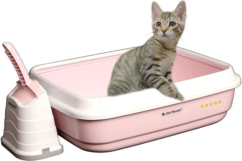 Litière pour chat exclusive ouverte avec rebord